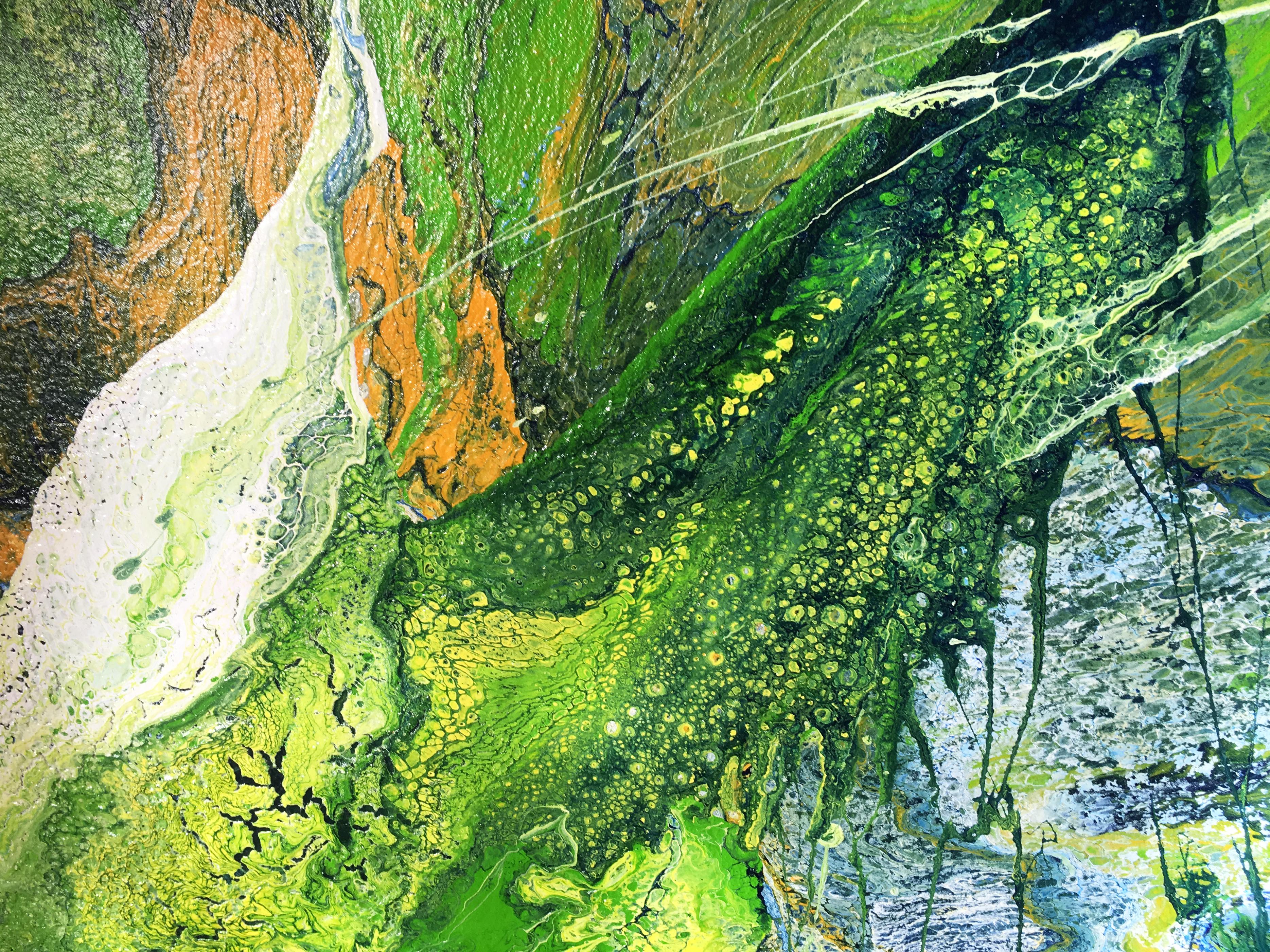 Příroda detail Katarína Regešová